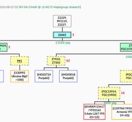 J2a-Z6065 tree 2015-09