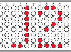 YSEQ J2 Panel
